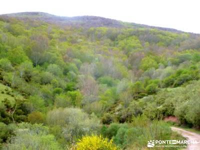 Cañones Ebro, Alto Campoo, Brañosera,Valderredible; viaje naturaleza; excursiones fin de año; via